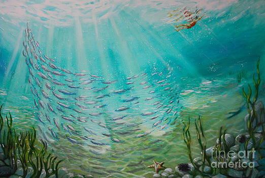 Splash by Yvonne Ayoub