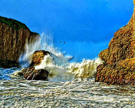 Splashing on the Rocks by Bruce Nutting