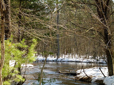 Split River by Erica  Darknell