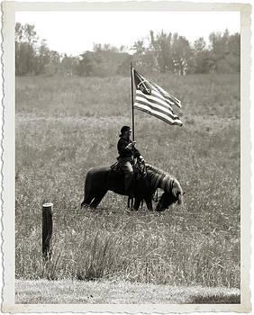 Spotsylvania CS Horse by Troy  Skebo