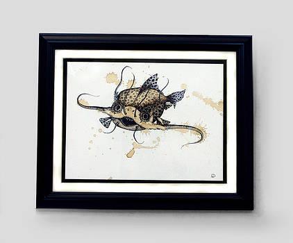 Spotted Feelerfish by Lisa Stevens