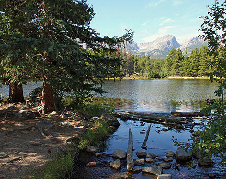 Sprague Lake by Carol Oberg Riley