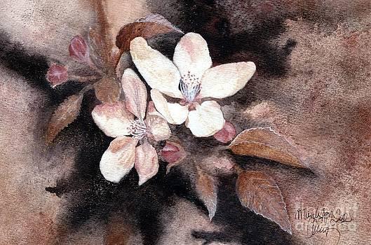 Spring by Amelia Macioszek