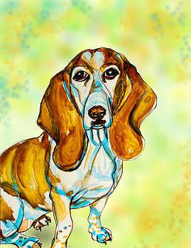 Spring Basset Hound by Kelly     ZumBerge