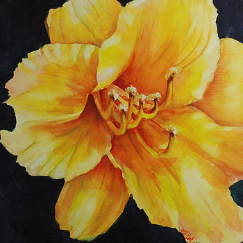 Donna Pierce-Clark - Spring Blossom