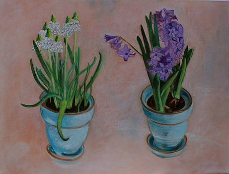 Spring Bulbs in New Turquoise Pots on a Red Ochre Tint Oil on Canvas by Cynthia Van Leeuwen