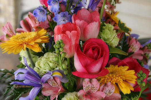 Spring Colors by Joan Bertucci