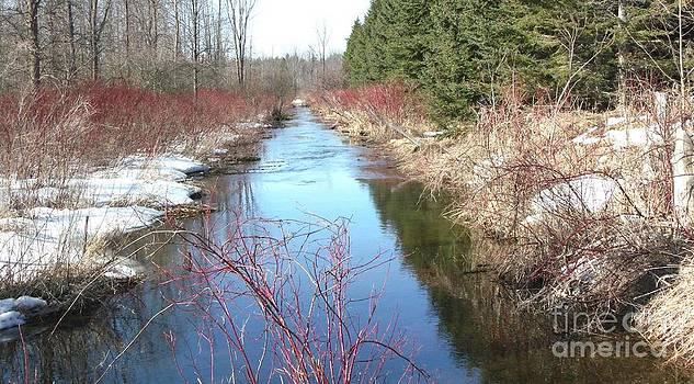 Gail Matthews - Spring Creek in full color