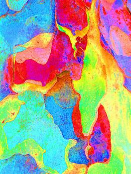 Margaret Saheed - Spring Eucalypt Abstract 16