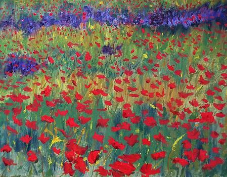 Spring Field by Cindy Lawson-Kester