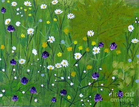 Spring Flowers by Olga R