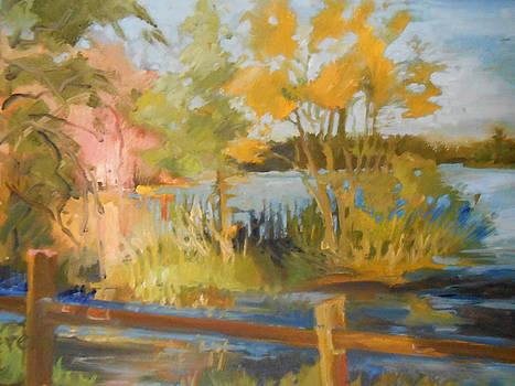 Spring Garden Creek by Trish Vevera