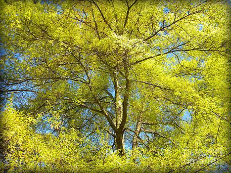 Spring Greening by Lorraine Heath