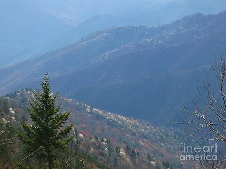 Jonathan Welch - Spring in the Smokies