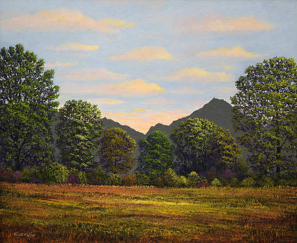 Frank Wilson - Spring Meadow At Sutter Buttes