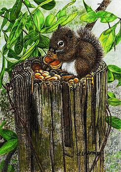 Spring Nuts by Sherryl Lapping