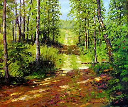 Spring Path by Wayne Fair
