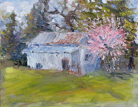 Spring Pink by Marcy Silveira