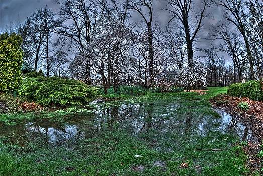 Spring Rains in the Garden by Kimberleigh Ladd