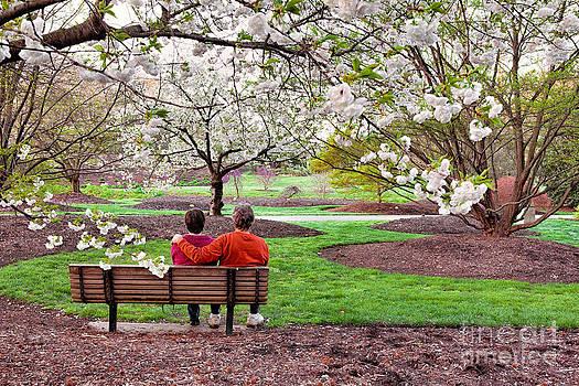 Spring Romance by Dan Carmichael