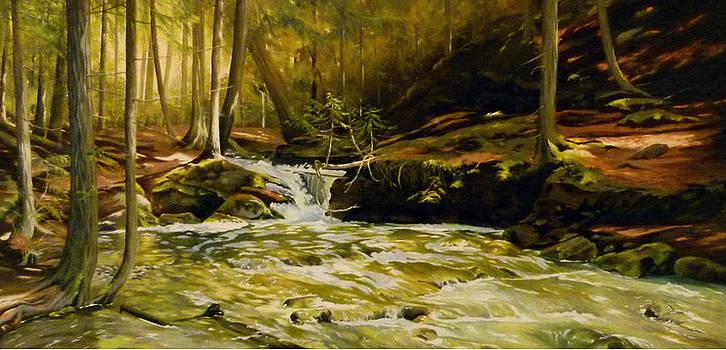 Spring Rush by Linda Hunt