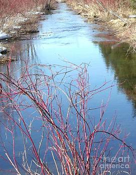 Gail Matthews - Spring shows Creek its colors
