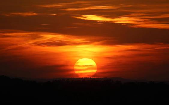 Spring Sunset by David  Jones