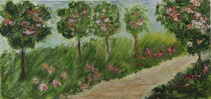 Spring walk by Alina Craciun