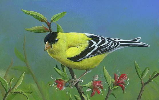 Spring's Return by Mike Brown