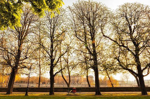 Springtime in Paris by Age Barros