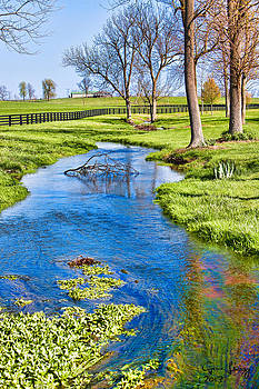 Springtime in the Bluegrass by Gene Linzy