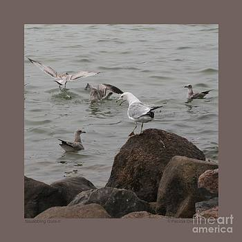 Squabbling Gulls-II by Patricia Overmoyer
