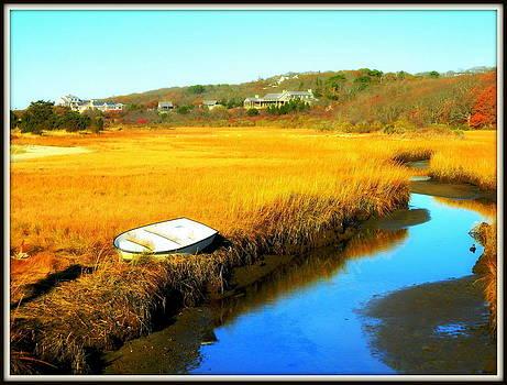 Near Squibnocket Pond 2 by Kathy Barney