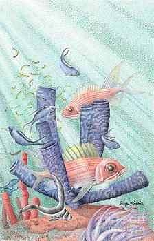 Squirrel Fish Reef by Wayne Hardee