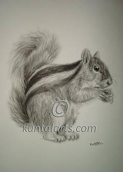 Squirrel by Kuntal Chaudhuri