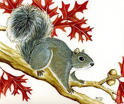 Squirrel by Lori Ziemba