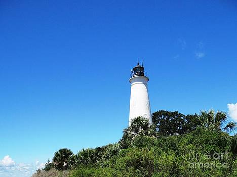 St. Marks Lighthouse High Noon by Ecinja