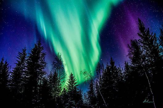 St Paddy's Night Auroras by Steve  Milner