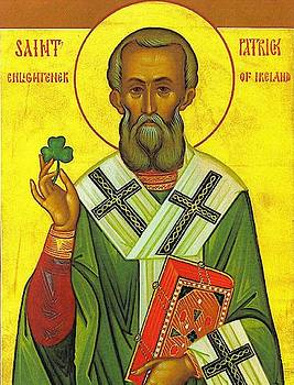 St Patrick And The Shamrock by Pam Neilands