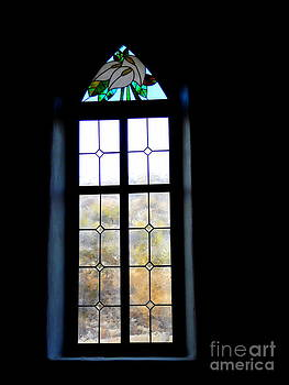 Stained Glass Window into the Desert by Avis  Noelle