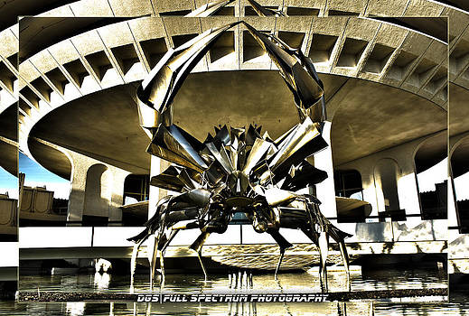 Stainless Steel Crab by DGS Full Spectrum Photography