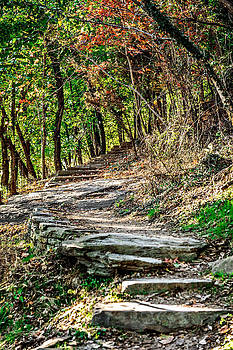 Stairs from Jackson Rock by Kelley Nelson