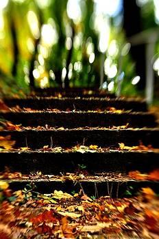 Stairs to Heavan by Reka Lendvai