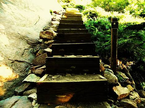 Stairway to Happiness by Christian Rooney