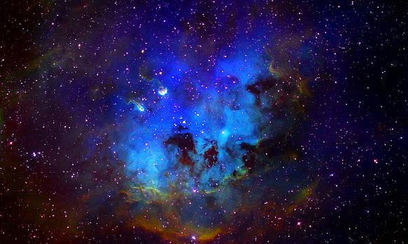 Dale Jackson - Star Cluster