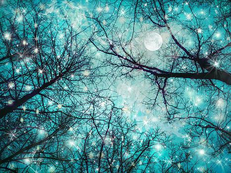 Star Night by William Schmid