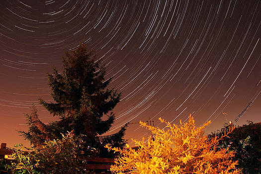 Star trails by Jay Harrison