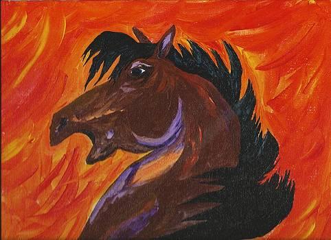 Starfire by Mark Schutter