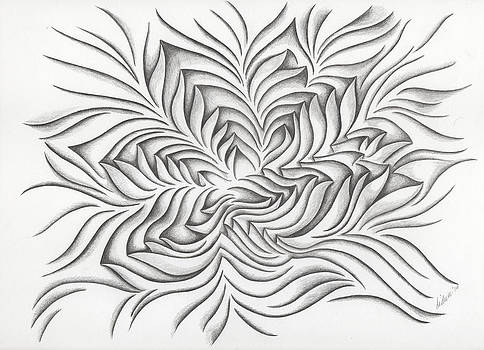 Starfish - 41 by Diana Durr