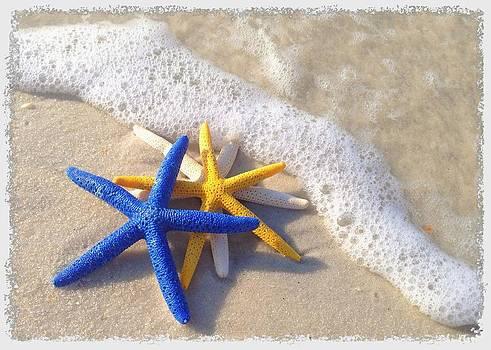 Starfish in the Surf by Elizabeth Budd